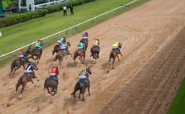 De weddenschap van het paardenrennenspel Stock Afbeelding