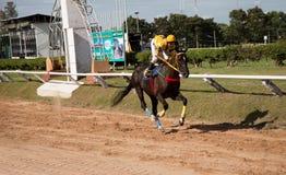 De weddenschap van het paardenrennenspel Stock Foto