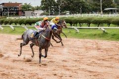 De weddenschap van het paardenrennenspel Stock Afbeeldingen