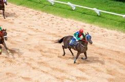 De weddenschap van het paardenrennenspel Royalty-vrije Stock Fotografie