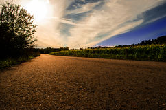 De weg aan het licht Stock Afbeeldingen