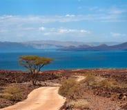 De weg aan het meer, Kenia Stock Afbeeldingen