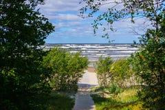 De weg aan de kust van de Golf van Riga Augustus 2017, Jurmala, Letland stock afbeeldingen