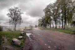 De weg aan de mist Tver Rusland stock afbeeldingen