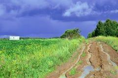 De weg aan onweerswolken royalty-vrije stock afbeeldingen