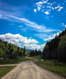 De weg aan Zion Stock Fotografie