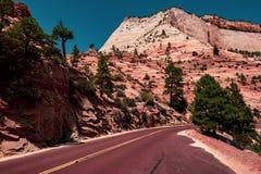De weg aan Zion National Park, Utah royalty-vrije stock foto's