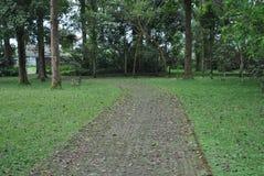 De weg in de botanische tuin van Bedugul Bali royalty-vrije stock fotografie