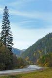 De weg in de Bergen Stock Foto's