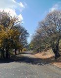 De weg in de bergen Royalty-vrije Stock Afbeelding