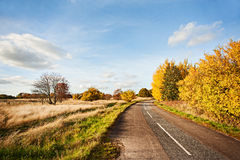 De weg in de Daling Stock Afbeelding