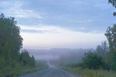 De weg in de mist Stock Fotografie