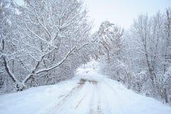 De weg in de sneeuw Stock Afbeelding