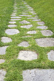 De weg in de tuin Stock Foto