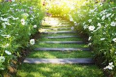 De weg in de tuin royalty-vrije stock afbeelding