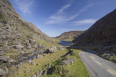 De weg die van de berg in Hiaat van Dunloe leidt, lreland royalty-vrije stock fotografie