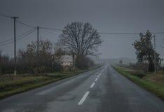 De weg in de donkere fogy dag stock afbeeldingen