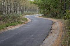 De weg door het herfstbos Royalty-vrije Stock Afbeeldingen