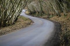 De winterweg en hout stock afbeelding