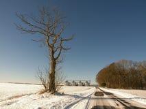 De weg en het landbouwbedrijf van de winter Stock Fotografie