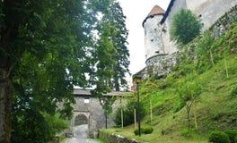 De weg en de ingang aan het Afgetapte kasteel, Julian Alps-bergen, zonnige dag, tapten, Slovenië af stock afbeeldingen