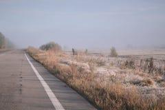 De weg gaat in de afstand in de mist Rijp op gras royalty-vrije stock afbeelding