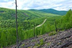De weg gaat tussen de groene heuvels over royalty-vrije stock foto