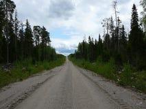 De weg in het bos Stock Foto's