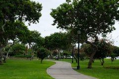 De weg in het groene stadspark royalty-vrije stock afbeeldingen