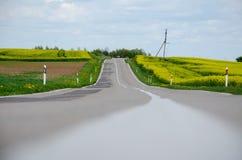 De weg in het midden van geel rapseed bloemen Stock Foto's
