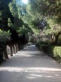 De weg in het park Royalty-vrije Stock Fotografie