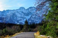 De weg in Hoge Tatras in de herfst Royalty-vrije Stock Afbeelding