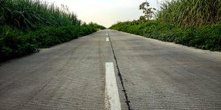 De weg naast de suikerriettuin in de ochtend stock afbeeldingen