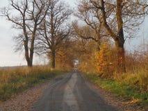 De weg in onbekend Stock Afbeeldingen