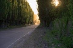 De weg is stil Rook perspectief royalty-vrije stock foto