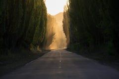 De weg is stil Rook perspectief stock afbeelding