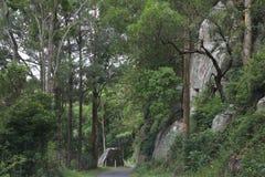 De weg tussen de rotsen Royalty-vrije Stock Foto