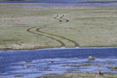 De weg vage de lentevloed Stock Fotografie