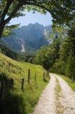 De weg van alpen Stock Afbeelding