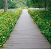 De weg van bloemen Royalty-vrije Stock Afbeeldingen
