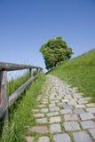 De weg van Cobbled in platteland Stock Afbeeldingen