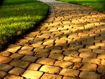 De weg van Coblestone in de zomerzonnen Stock Fotografie