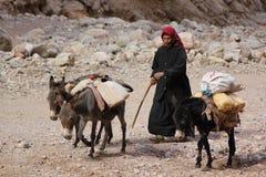 De weg van de Berbervrouw met ezels Stock Afbeeldingen