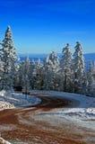 De Weg van de berg met Sneeuw en Bomen Royalty-vrije Stock Afbeelding