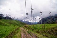De Weg van de Cocoravallei Stock Afbeelding