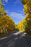 De weg van de daling op Grote Mesa Royalty-vrije Stock Afbeelding