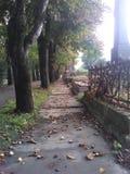 De weg van de dalingsbegraafplaats Stock Foto