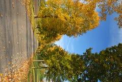De herfstweg stock foto's