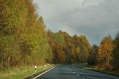 De Weg van de herfst na een Regen Royalty-vrije Stock Foto's