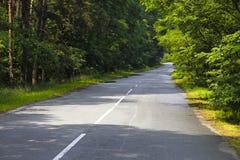 De weg van de kromme in een bos Stock Foto's